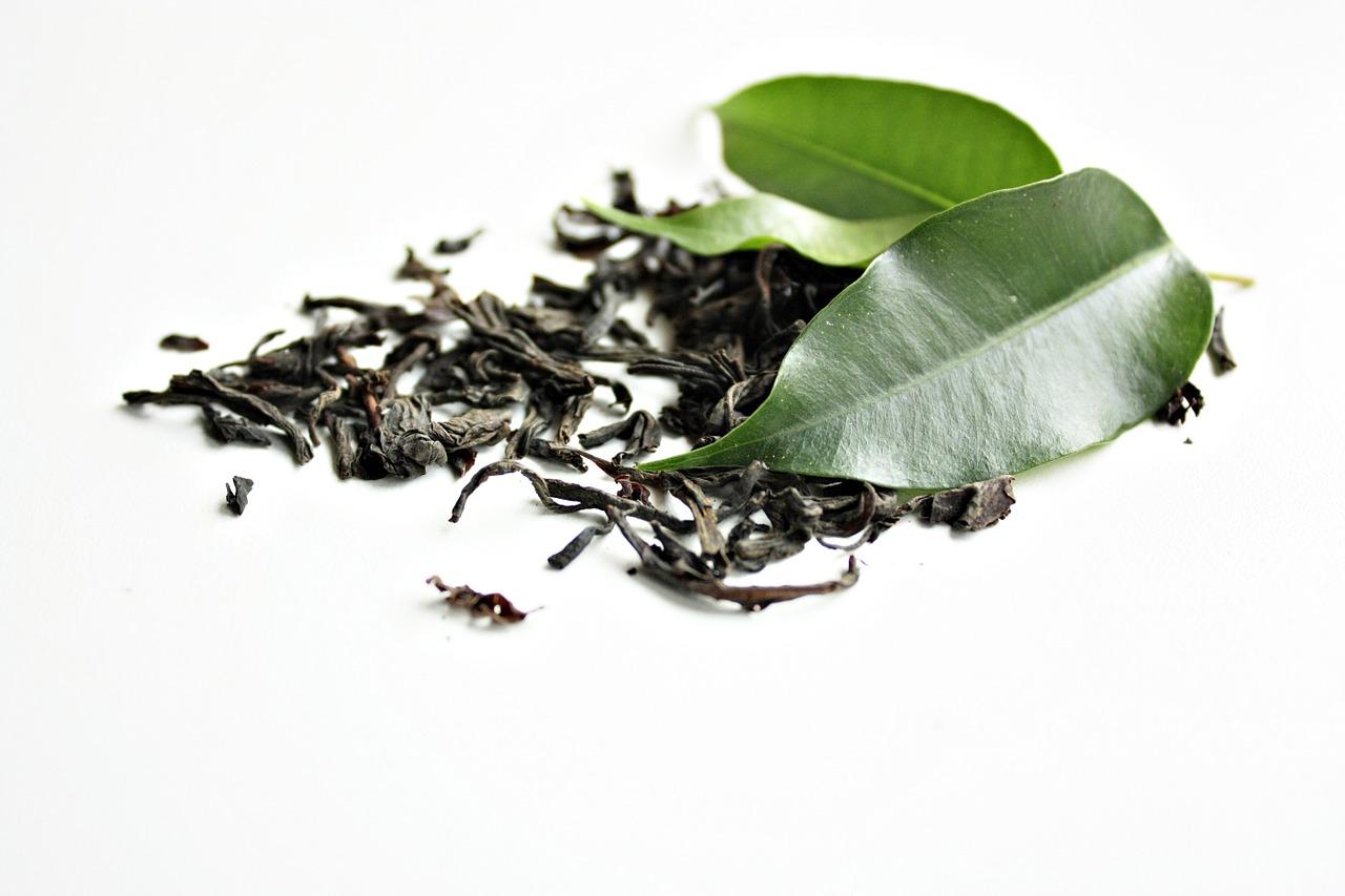 detail listu čajovníku
