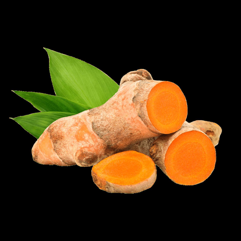 kurkuma-řez