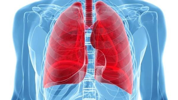 Plice-v-tele